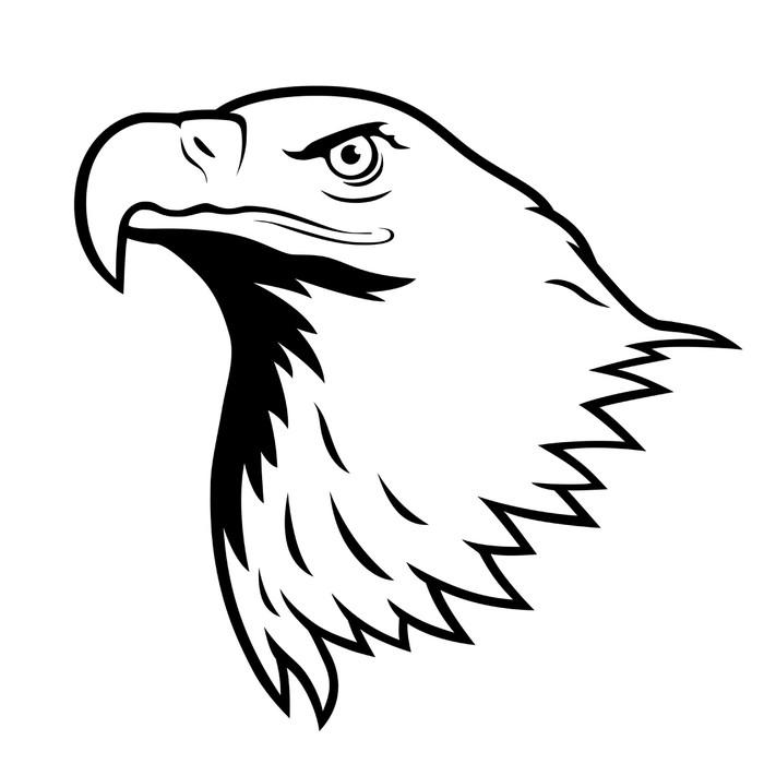Vinilo Pixerstick Águila calva, águila americana. • Pixers ...