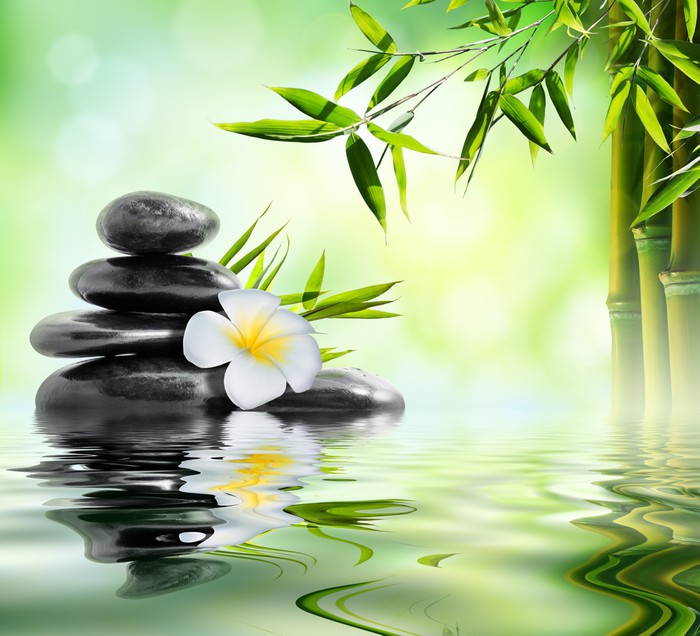 Cuadro en lienzo tratamiento de masaje spa en el jard n for Cuadros para el jardin