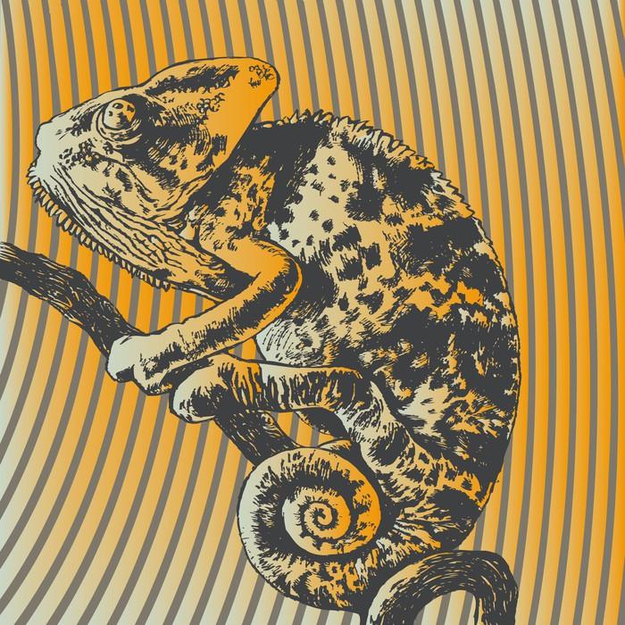 Vinylová Tapeta Vektorové ilustrace s chameleon - Témata