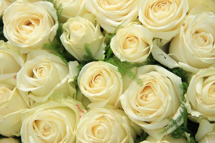 Vinylová Tapeta Bílá růže na svatební uspořádání - Slavnosti