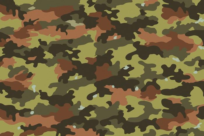 Vinylová Tapeta Camouflage Fabric textury, textury 1 - Život