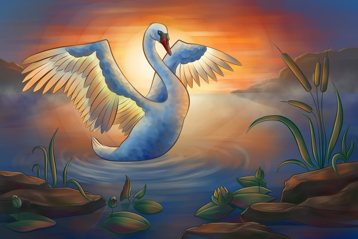 swan on the pond Vinyl Wallpaper - Birds