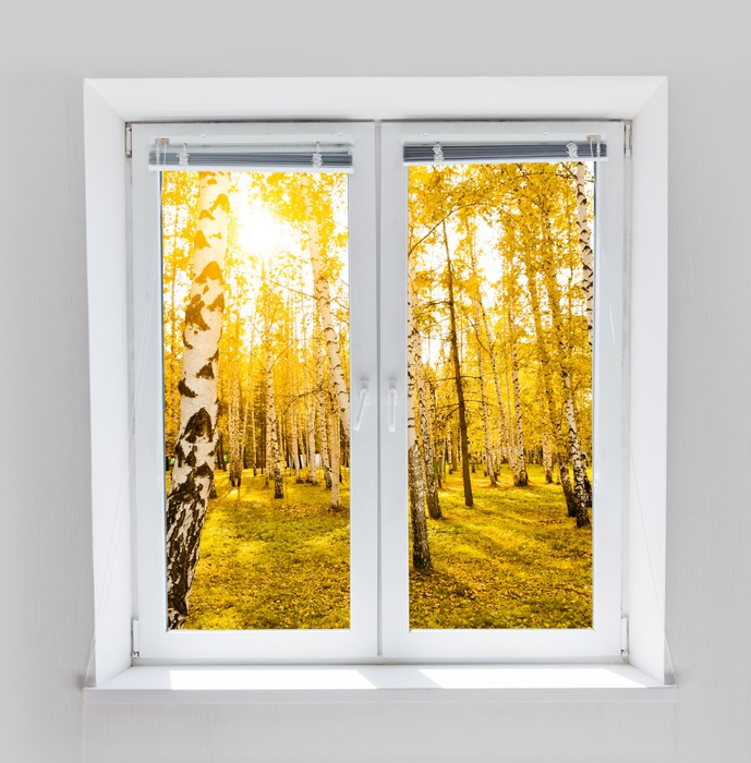 Autumn Window Wall Mural Pixers We Live To Change