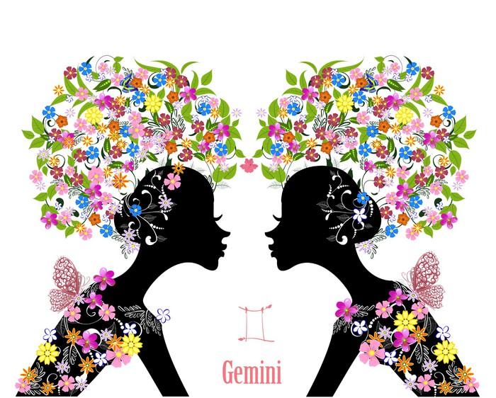 Zodiac Sign Gemini Fashion Girl Wall Mural Pixers We Live To