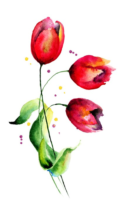 Vinylová Tapeta Originální Tulipány květiny - Květiny