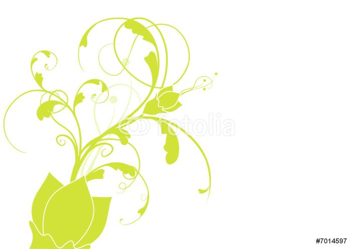 Vinylová Tapeta Vektor série - fleurs vertes isolées sur un fond blanc - Květiny