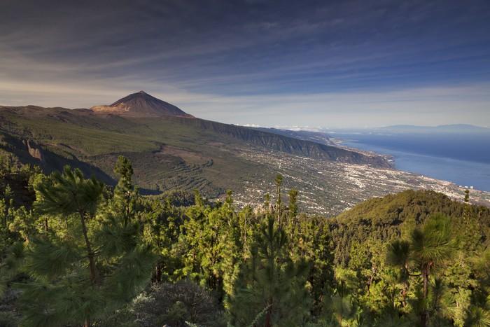 Vinylová Tapeta Tenerife XXII - Prázdniny