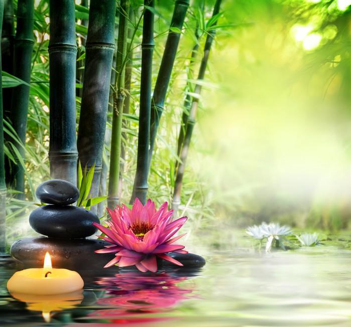 Fototapete massage in der natur lilie steine bambus