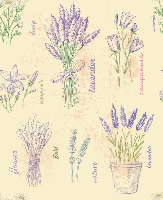 Vinylová Tapeta Ilustrace květu -