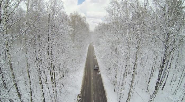 Vinylová Tapeta Silnice s autem ve velkém zimním lese s matného stromy. - Asijská města