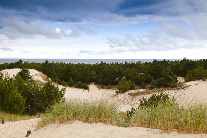 Papier Peint à Motifs Vinyle Les dunes de sable sur la côte de la Baltique dans la matinée - Sports d'extérieur
