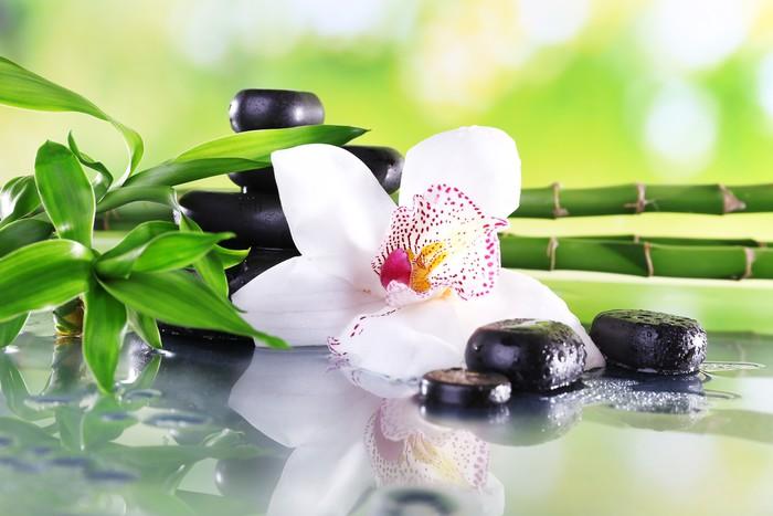 fototapete spa steine bambus zweige und wei e orchidee. Black Bedroom Furniture Sets. Home Design Ideas