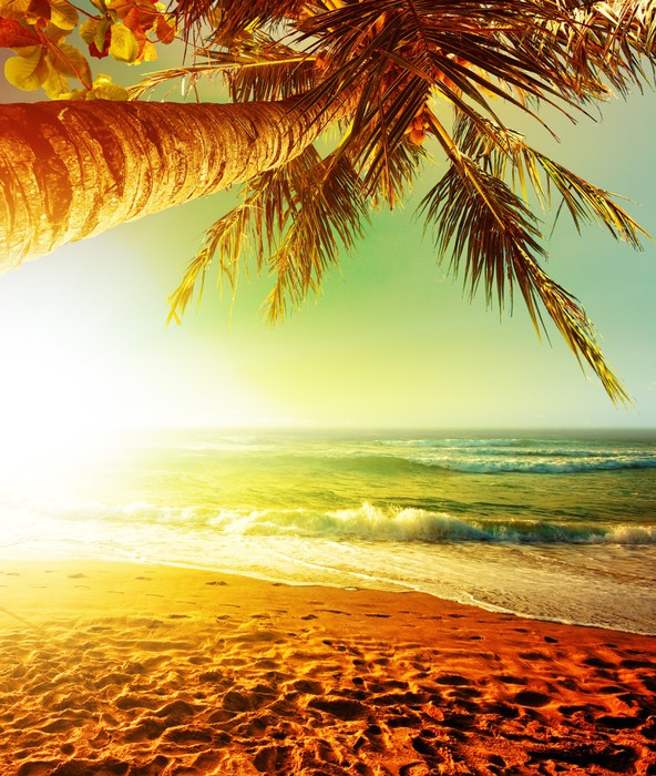 Sunset Over The Tropical Beach Wall Mural Pixers 174 We