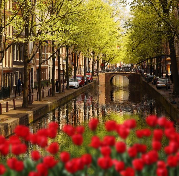 Hotel Im Grunen Amsterdam
