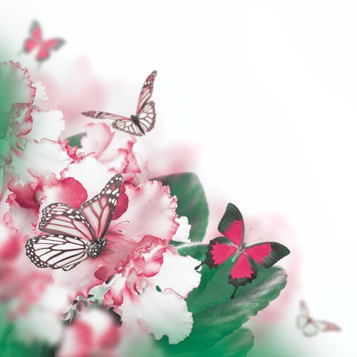 Vinylová Tapeta Úžasná kytice jarních fialek a motýl - Květiny