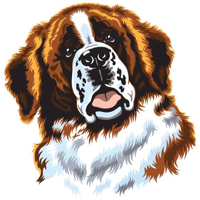 Vinylová Tapeta Svatý Bernard pes - Savci