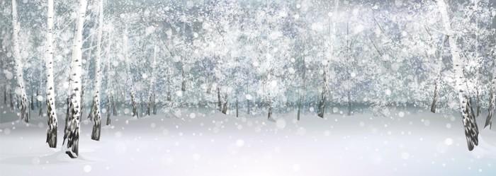 Vinylová Tapeta Vektor v zimě zasněžené krajiny, březového lesa. - Styly