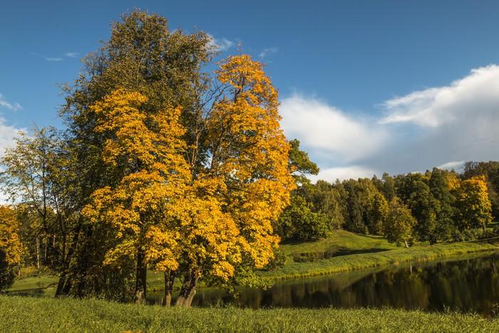Papel pintado paisaje pixers vivimos para cambiar - Papeles pintados paisajes ...