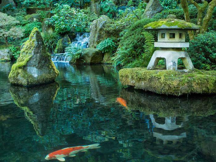 Tableau sur toile une lanterne et koi dans le jardin - Tableau jardin japonais ...