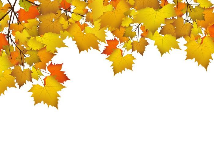 Blätter, Herbst, Hintergrund, Farben, Leafs, Autumn,Background, Wall ...
