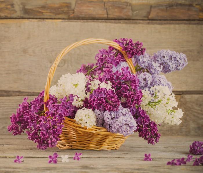 Vinylová Tapeta Koš s pobočkou lila květiny na dřevěné pozadí - Struktury