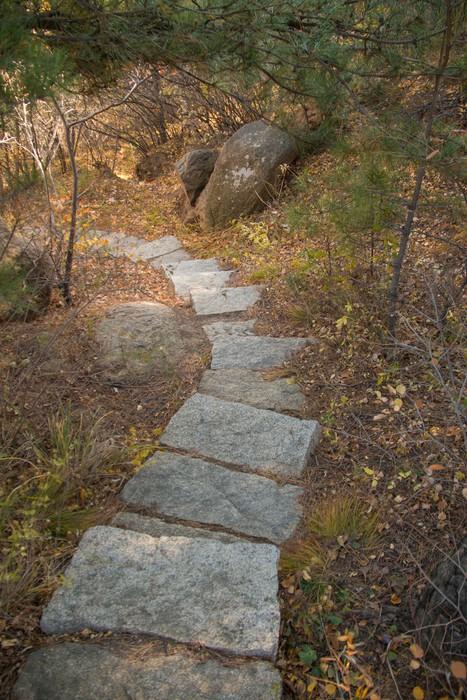 Объявления В Каменной Лестнице Знакомства