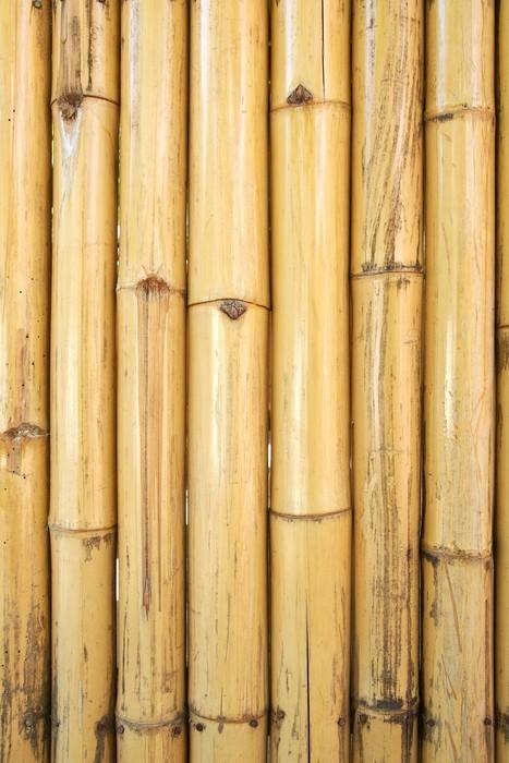 Vinylová Tapeta Žlutá bambus textury a pozadí - Struktury