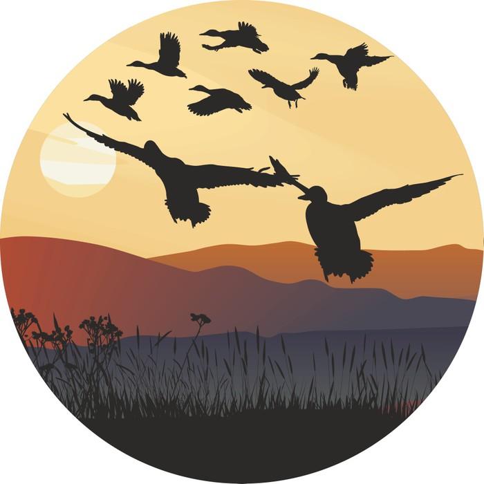 Vinylová Tapeta Divokých kachen při východu slunce a kopcovité krajiny - Ptáci