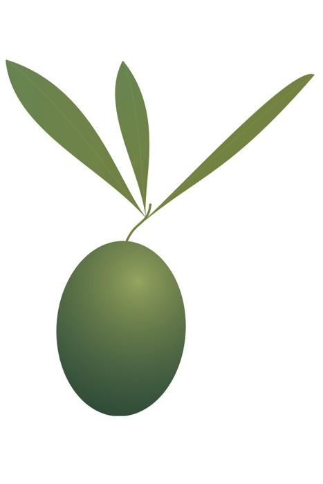Vinylová Tapeta Olive. - Koření a bylinky