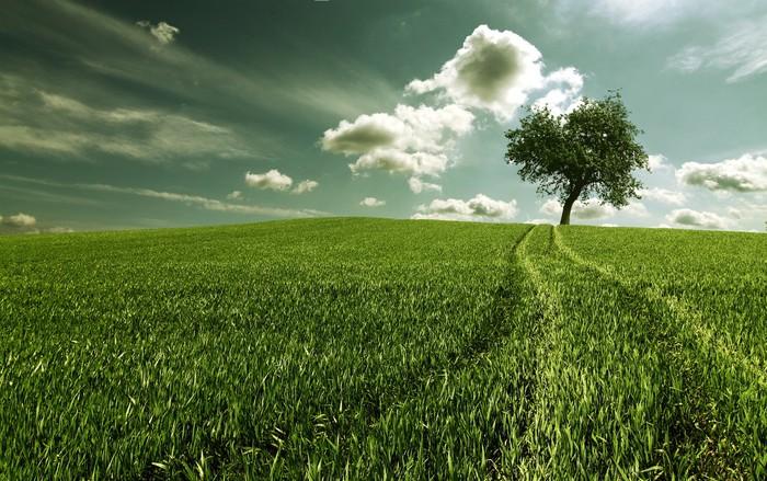 Vinylová Tapeta Land5 - Zemědělství