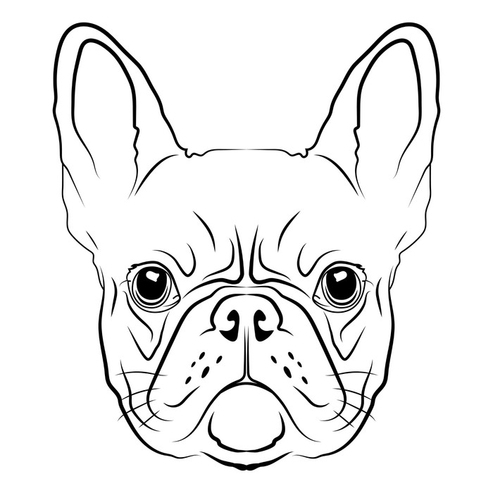 French Bulldog Head Logo Or Icon In White Wall Mural