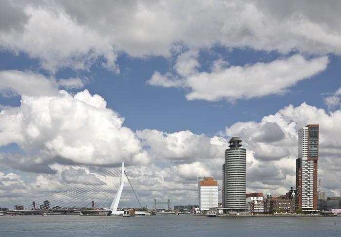 Vinylová Tapeta Panorama Rotterdamu - Těžký průmysl