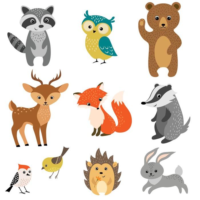 Fototapeta cute lesní zvířata pixers Žijeme pro změnu