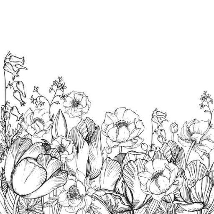 Vinylová Tapeta Vektor květinové pozadí elegance s grafickými jarní květiny - Rostliny a květiny