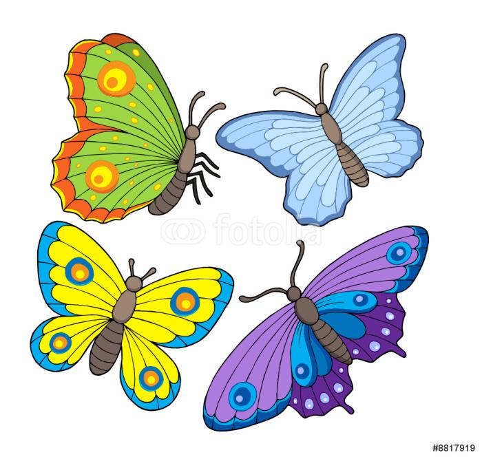 Vinylová Tapeta Butterfly kolekce 2 - Ostatní Ostatní