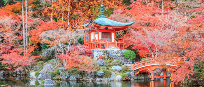The leave change color of red in Temple japan. Wall Mural - Vinyl - Monuments