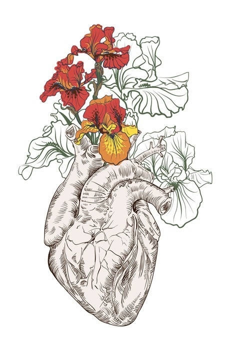 Sticker dessin coeur humain avec des fleurs pixers - Dessin du coeur humain ...