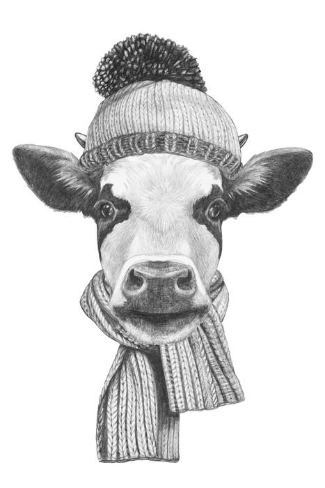 Nálepka Pixerstick Portrét Kráva s šálou a kloboukem. Ručně tažené ilustrace. - Savci