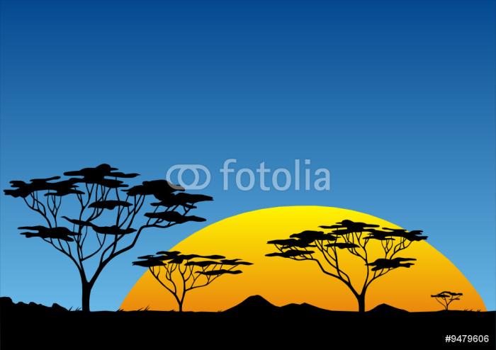 papier peint coucher du soleil africain pixers nous. Black Bedroom Furniture Sets. Home Design Ideas