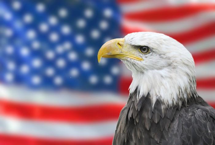 Vinylová Tapeta Orel bělohlavý národní vlajka Spojených států - Témata