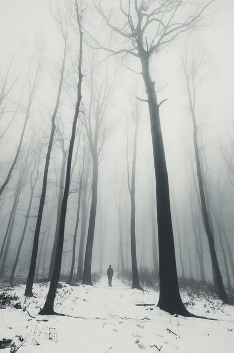 Plakát Muž v lese se vzrostlými stromy v zimě - Krajiny