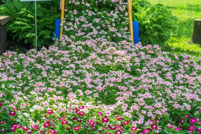 Sticker fleur dans le jardin pixers nous vivons pour for Fleurs dans le jardin